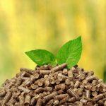 biomasa termia